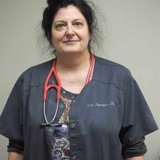 Dr.-Lisa-Pepmeyer
